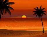 Fototapety Tropical beach sunset