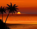 tropical beach sunset - 34370138