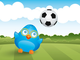 Young bluebird plays with a soccer ball