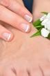 Finger, Fuss und Blüte