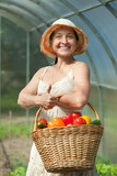 woman with harvested vegetables in greenhouse