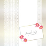 Fototapety card with lace background and cosmos