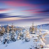 Fototapeta piękny - Boże Narodzenie - Góry
