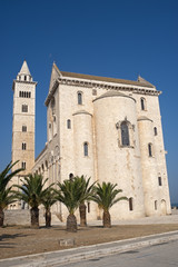 Trani (Puglia, Italy) - Medieval cathedral and palm trees