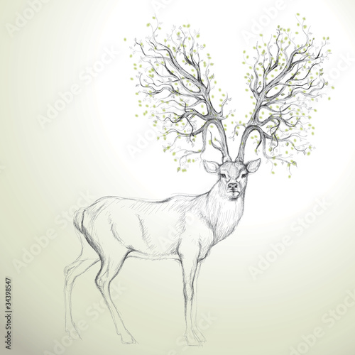 Deer with Antler like tree / Realistic sketch - 34398547