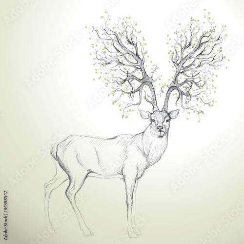 Deer with Antler like tree / Realistic sketch - 34398547