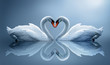 Obrazy na ścianę i fototapety : swans
