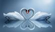 Fototapeten,swans,tier,herz,schönheit
