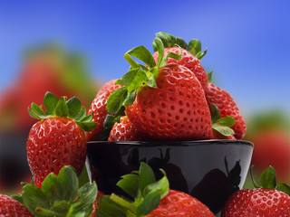 Fresh healthy strawberries for a healthy diet