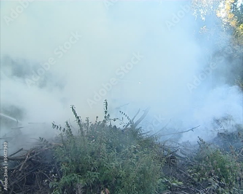 The fire in forest. Fire machine  is visible through the smoke