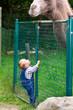 Baby beim Klettern im Zoo