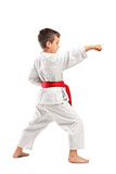 Fototapety Full length portrait of a karate child posing