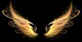Demon Angel Fire hell Wings - 34427156