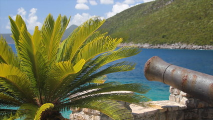 Cannon and Palm at Sea