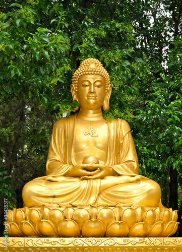 golden buddha statue meditating stockfotos und lizenzfreie bilder auf bild 34435317. Black Bedroom Furniture Sets. Home Design Ideas