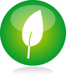 Blatt Icon green