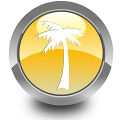 Palm glossy icon