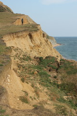cliff erosion in dorset
