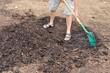 Gardener shovelling Cedar Mulch