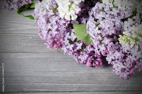 Foto op Canvas Lilac Beautiful lilac