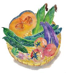 Summer vegetable basket