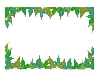 葉っぱ枠2