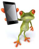Grenouille et smartphone