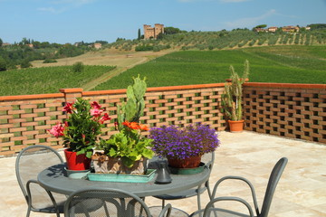 flowery terrace with a beautiful view of tuscan countryside