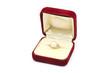 ジュエリーケースと真珠の指輪
