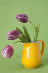 Delicate bouquet of purple tulips in a yellow jug