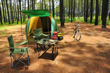 Fototapety camping in pine forest