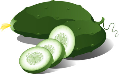 Cucumber over white