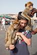 """Marrakech : Dresseur de singes """"Magot"""""""