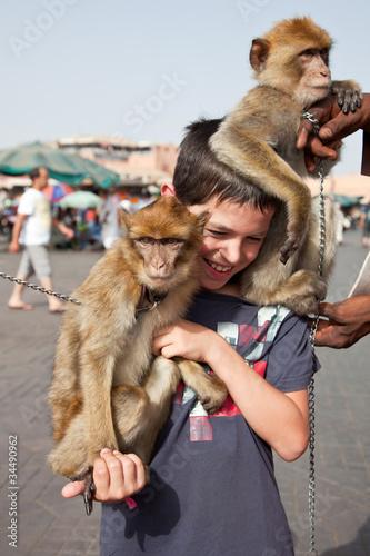 "Poster Marrakech : Dresseur de singes ""Magot"""