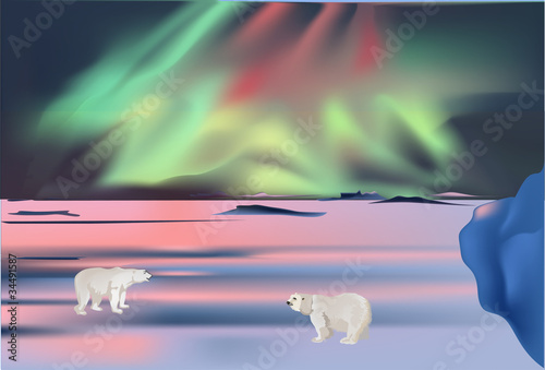 polar bears under aurora