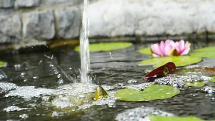Chute d'eau,  bassin de jardin
