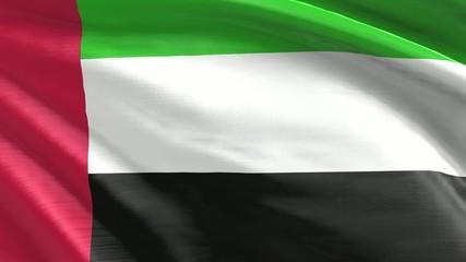 Nahtlos wehende Flagge Vereinigte Arabische Emirate