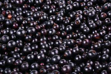 Ripe black currant