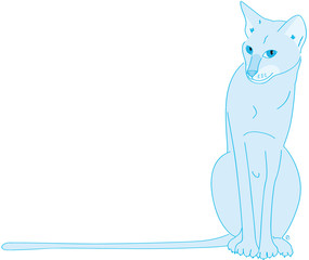 chatte orientale bleue assise