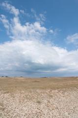 Dunes landscape near Quiberon on Cote Sauvage