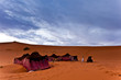 Bedouin tents in the Sahara Desert