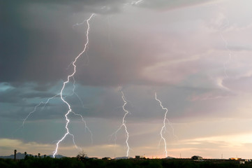 Arizona Lightning 2011a