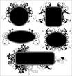 black floral frames