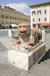 lion of marble in ferrara
