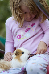 Enfant avec un cochon d'inde