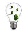 Clean energy, a light bulb