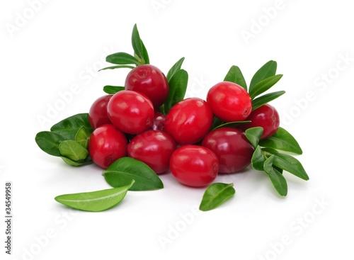 Frische Beeren