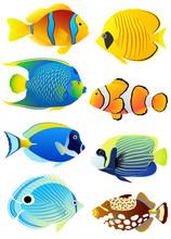 Uppsättning av tropiska fiskar