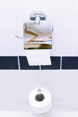 Roll of toilet paper holder in the toilet.