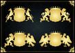 Vintage golden royal coat of arms illustration